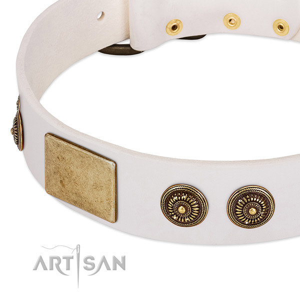 Adjustable dog collar created for your impressive four-legged friend