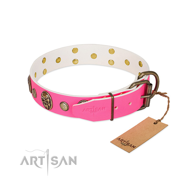 Durable fittings on full grain natural leather dog collar for your pet