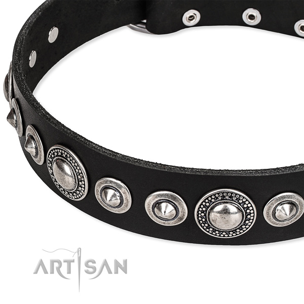 Stylish walking embellished dog collar of finest quality full grain leather
