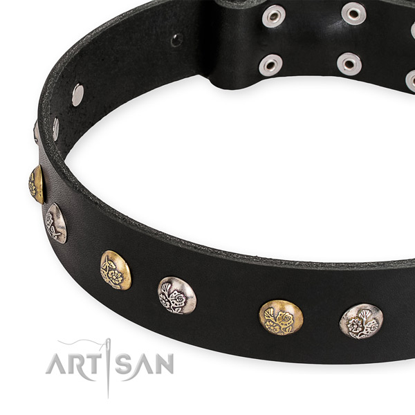 Full grain genuine leather dog collar with stylish design durable adornments