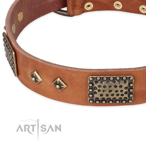 Reliable adornments on genuine leather dog collar for your canine