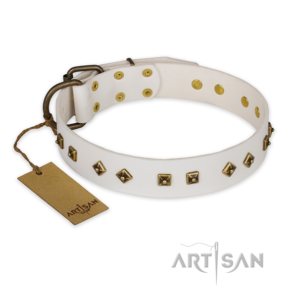 Adorned full grain genuine leather dog collar with durable traditional buckle