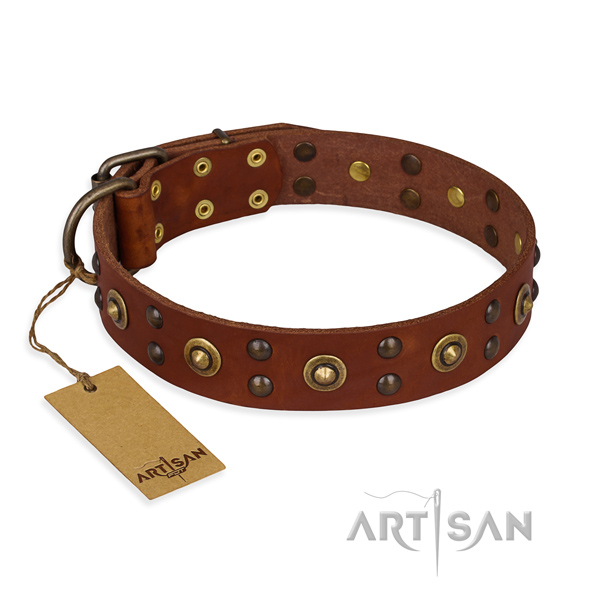 Significant full grain natural leather dog collar with corrosion proof fittings