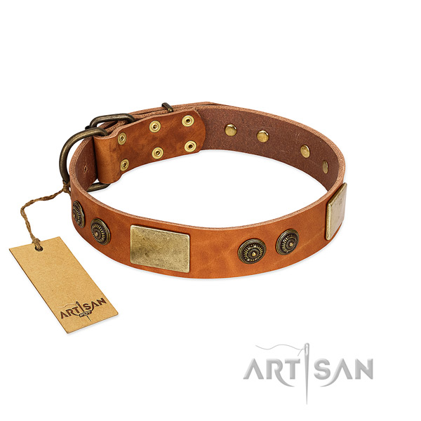 Stylish design leather dog collar for walking