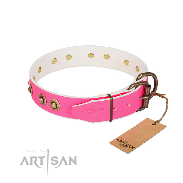 Full grain leather dog collar with rust-proof D-ring and studs