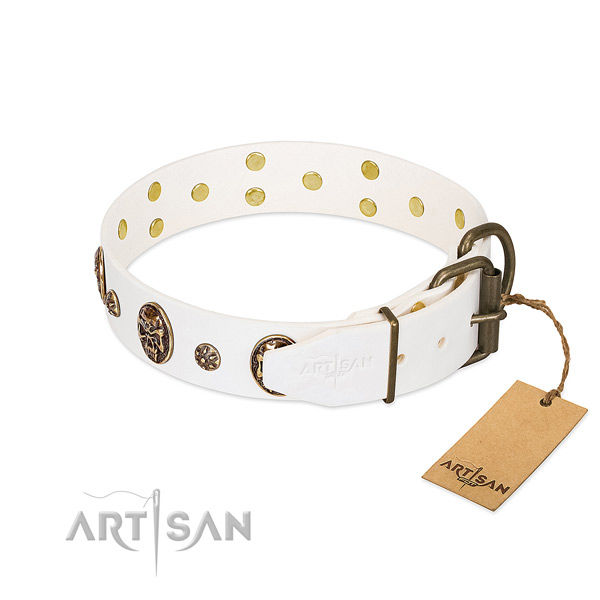 Rust-proof studs on full grain genuine leather dog collar for your four-legged friend