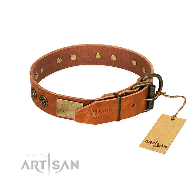 Reliable D-ring on full grain genuine leather collar for stylish walking your pet