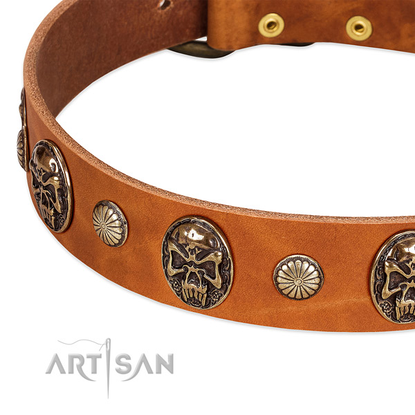 Corrosion proof embellishments on full grain natural leather dog collar for your dog