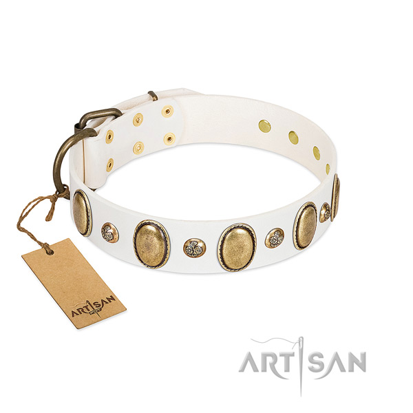 Genuine leather dog collar of best quality material with stylish design studs