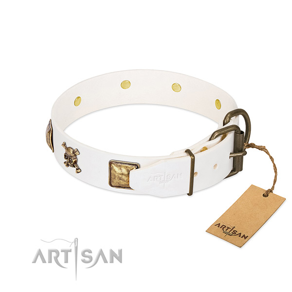 Extraordinary full grain leather dog collar with corrosion proof embellishments