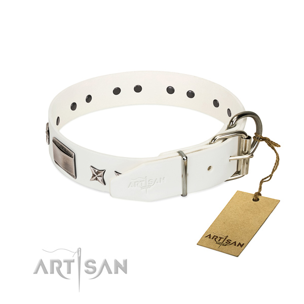 Incredible collar of full grain genuine leather for your handsome doggie