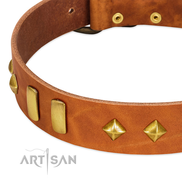 Everyday walking genuine leather dog collar with designer decorations