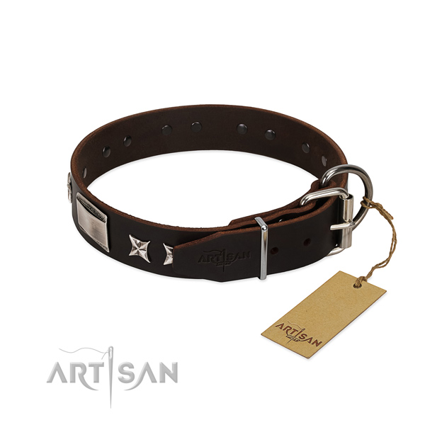 Comfortable collar of leather for your stylish dog