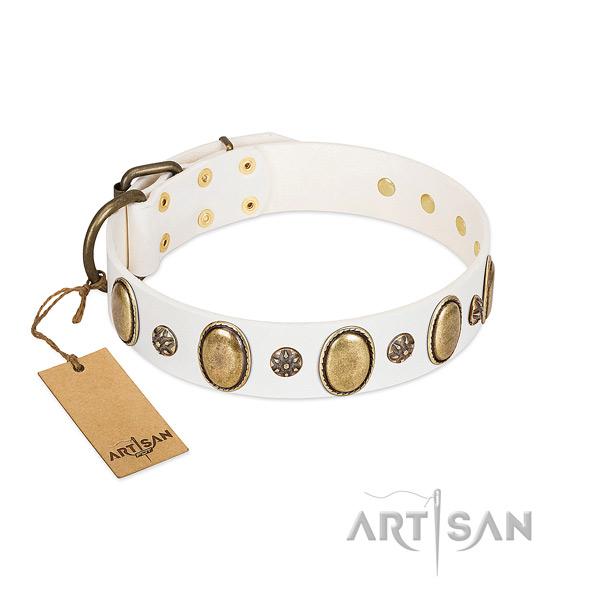 Daily walking high quality full grain natural leather dog collar with embellishments
