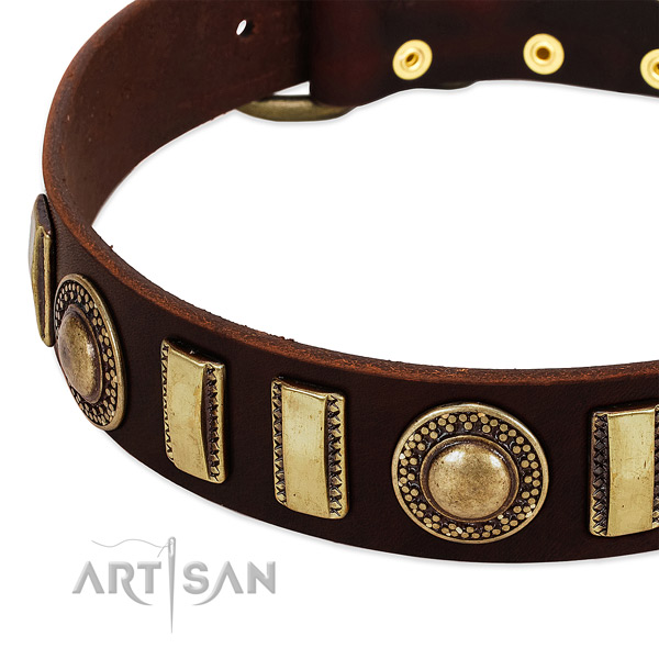 Best quality natural leather dog collar with reliable hardware