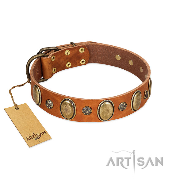 Comfy wearing best quality full grain genuine leather dog collar with studs