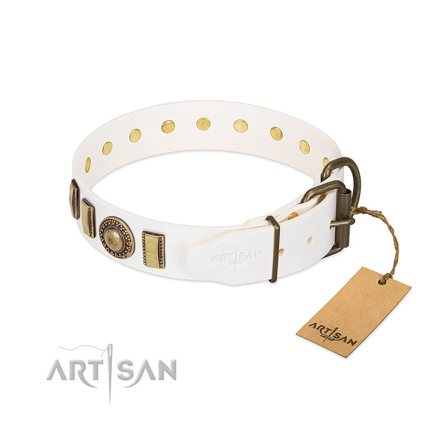 Adorned leather dog collar with rust-proof hardware