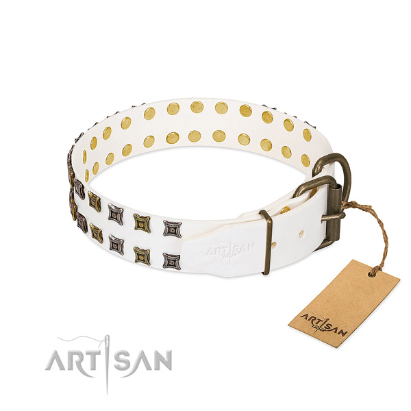 Leather collar with incredible studs for your pet
