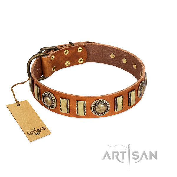 Easy wearing full grain genuine leather dog collar with reliable hardware