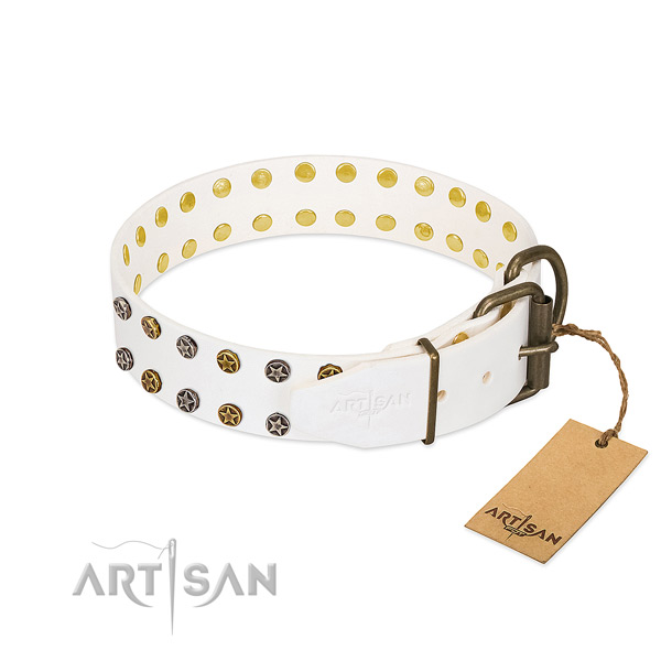 Full grain natural leather collar with remarkable embellishments for your pet