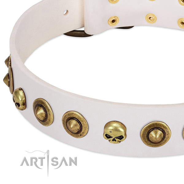 Top notch decorations on natural leather collar for your canine
