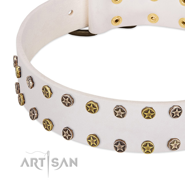 Unique adornments on full grain natural leather collar for your pet