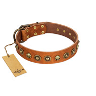 """Prez of the Pack"" FDT Artisan Tan Leather English Bull Terrier Collar with Skulls and Brooches"