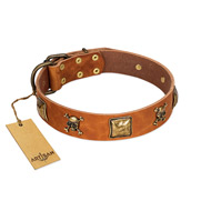 """Knights Templar"" FDT Artisan Tan Leather English Bull Terrier Collar with Skulls and Crossbones Combined with Squares"