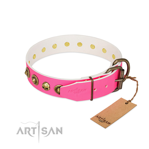 Natural leather collar with trendy studs for your canine