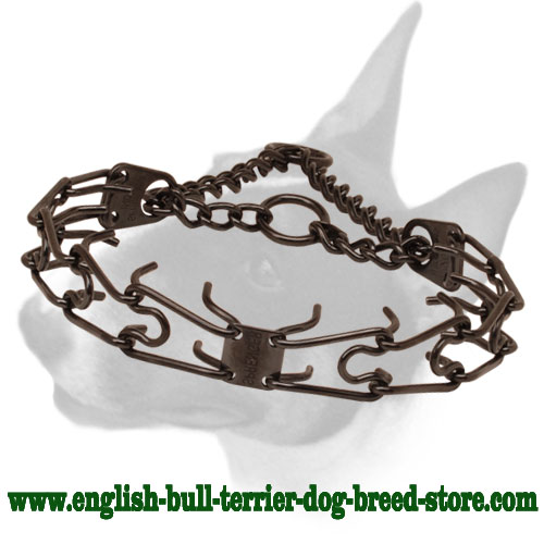 Prong collar of rust resistant black stainless steel for badly behaved dogs
