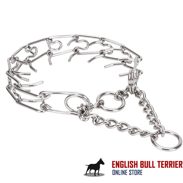 Durable stainless steel dog prong collar with corrosion resistant removable prongs