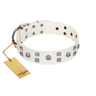 """Rock the Sky"" Durable FDT Artisan White Leather English Bull Terrier Collar with Chrome-plated Decorations"