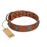 """Blue Sands"" FDT Artisan Tan Leather English Bull Terrier Collar with Silver-like Studs and Round Conchos with Stones"