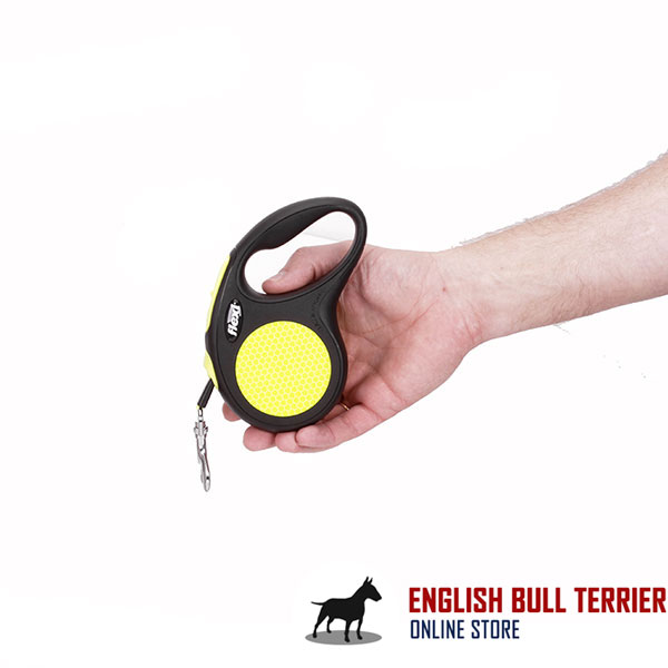 Convenient Handle on Everyday Dog Retractable Leash