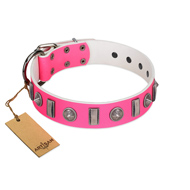 """Treasure Island"" FDT Artisan Pink Leather English Bull Terrier Collar with Silver-Like Studs"