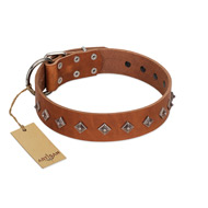 """Broadway"" Handmade FDT Artisan Tan Leather English Bull Terrier Collar with Dotted Pyramids"