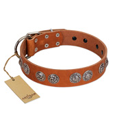 """Woofy Majesty"" FDT Artisan Tan Leather English Bull Terrier Collar with Round Silver-like Plates"