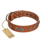 """Brave Spirit"" Handmade FDT Artisan Designer Tan Leather English Bull Terrier Collar with Shields"