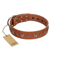"""Star Shine"" Exclusive FDT Artisan Tan Leather English Bull Terrier Collar with Silver-Like Adornments"