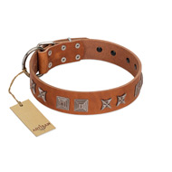 """Antique Figures"" FDT Artisan Tan Leather English Bull Terrier Collar with Silver-like Engraved Plates"