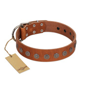 """Lucky Star"" Handmade FDT Artisan Designer Tan Leather English Bull Terrier Collar with Round Plates"