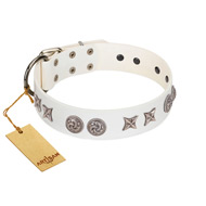 """Galaxy Hunter"" FDT Artisan White Letaher English Bull Terrier Collar with Engraved Brooches and Stars"
