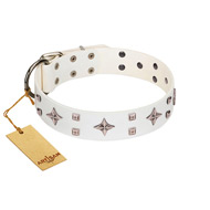 """The Milky Way"" FDT Artisan White Leather English Bull Terrier Collar Adorned with Stars and Tiny Squares"