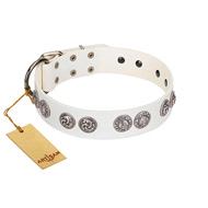 """Eye Candy"" Appealing FDT Artisan White Leather English Bull Terrier Collar with Chrome Plated Medallions"