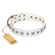 """Fashion Star"" FDT Artisan White Leather English Bull Terrier Collar with Silver-Like Engraved Plates and Stars"