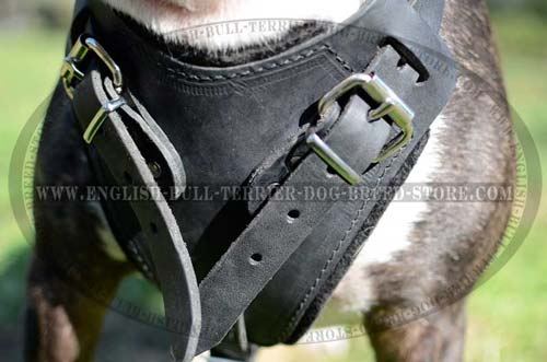 Padded Chest Plate of Leather Dog Harness for Comfy Training
