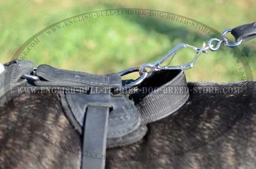 Solid Nickel Plated D-Ring on Training Leather Dog Harness
