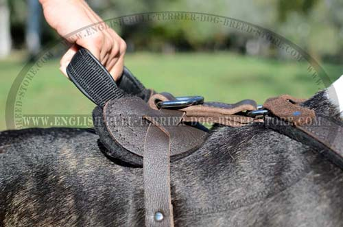 Super Strong Reliable Handle of Training Leather Dog Harness