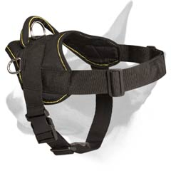 Nylon dog harness for many purposes