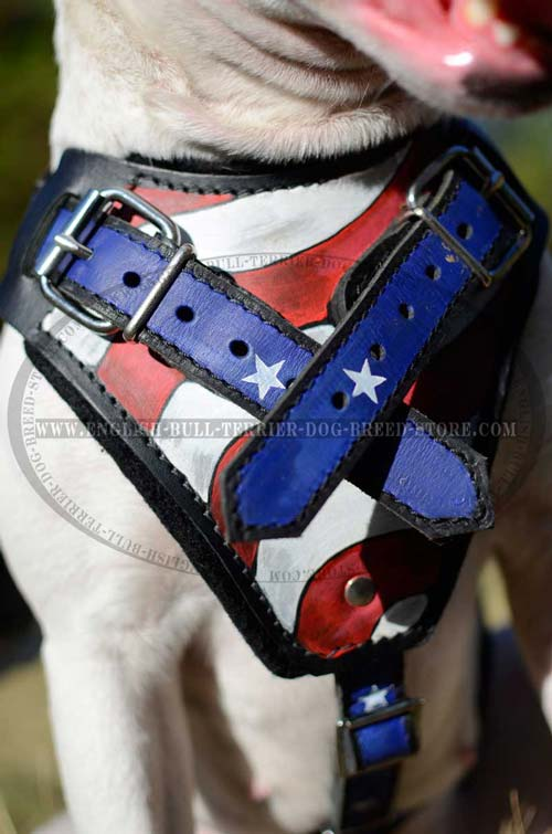 Painted dog harness